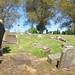 Irvine Old Parish Churchyard (451)
