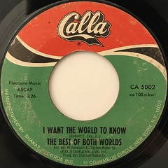 THE BEST OF BOTH WORLDS:I WANT THE WORLD TO KNOW(LABEL SIDE-A)