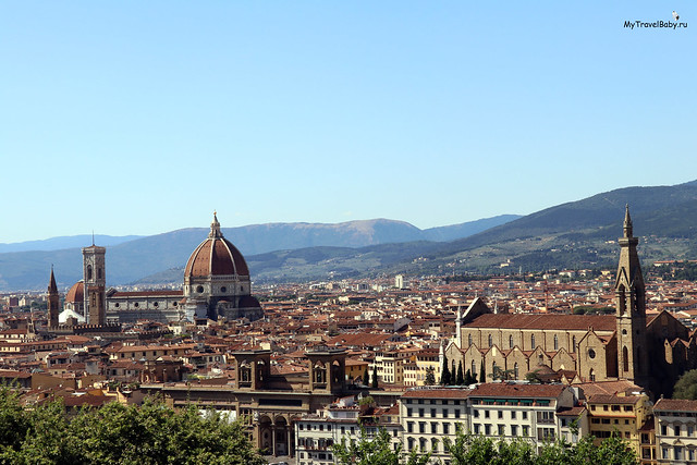 florence006