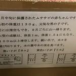 IMG_1518