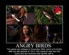 Summer Glau TSCC Cameron Angry Birds funny