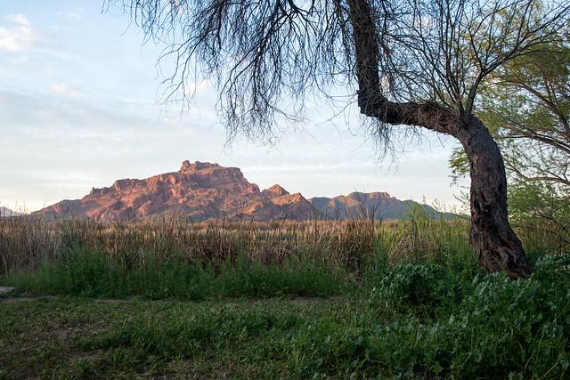 Mesa, Arizona, USA.
