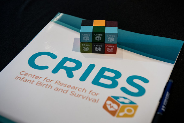 CRIBS - 2018 Infant Mortality Research Symposium