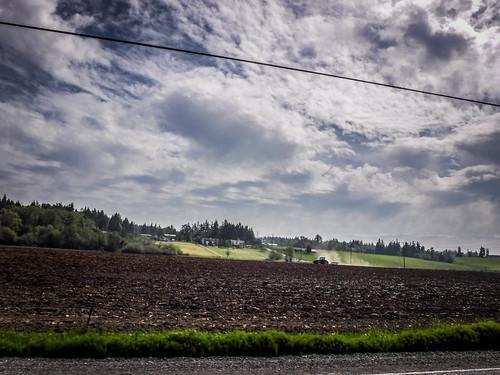 Samish Flats Fields-003