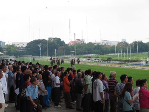 ロイヤルターフクラブ競馬場の直線走路