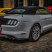 FORD MUSTANG GT CONVERTIBLE - rear view