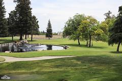 Golf 2018-10