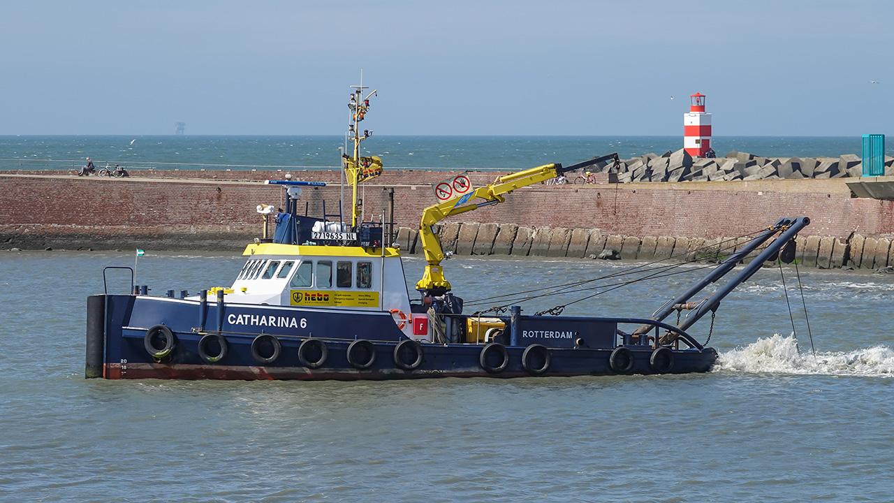 Catharina 6