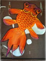 Fishy Kite