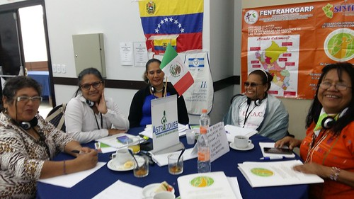 2018-5-4 Brazil: Day 2 - IDWF Continental Meeting for affiliates in Americas