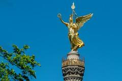 Skulpturen im Tiergarten