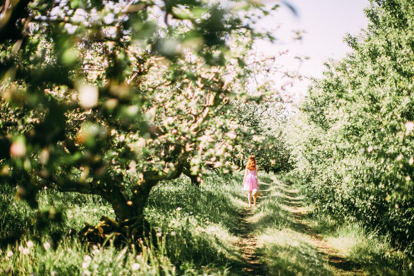 wildorchard-28