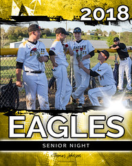 Vienna Eagles Baseball 80