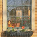 Window at the Farm Stand by Dorian Susan