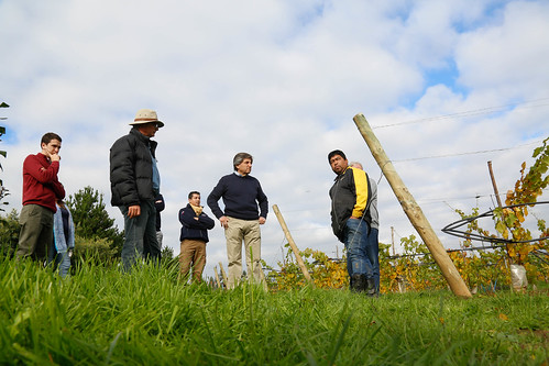 Director Nacional de Indap vista comunidad de Buchahueico - Purén
