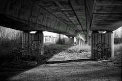Underpass crossing over Cardiff Bay nature reserve. #blackandwhite #underpass