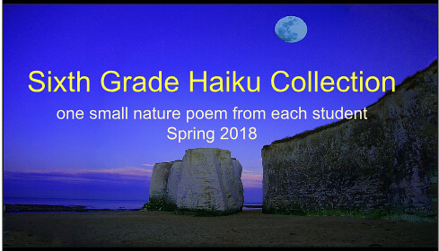 Haiku Poetry Collection