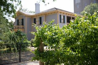 Mon, 2018-05-14 14:40 - Woodrow Wilson House (178 of 210)