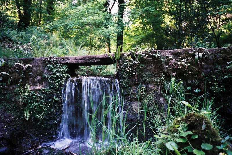 Waterfall from a Paradise Bottom pond