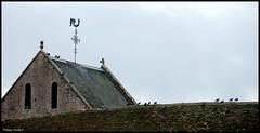 Ancinnes (Sarthe)
