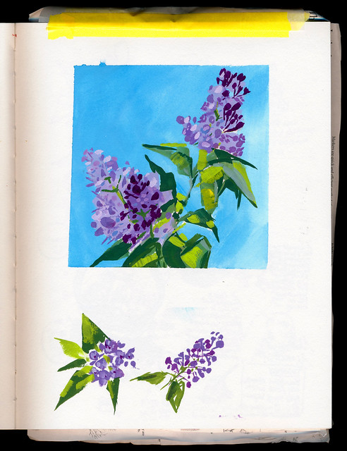Sketchbook #113: Lilac