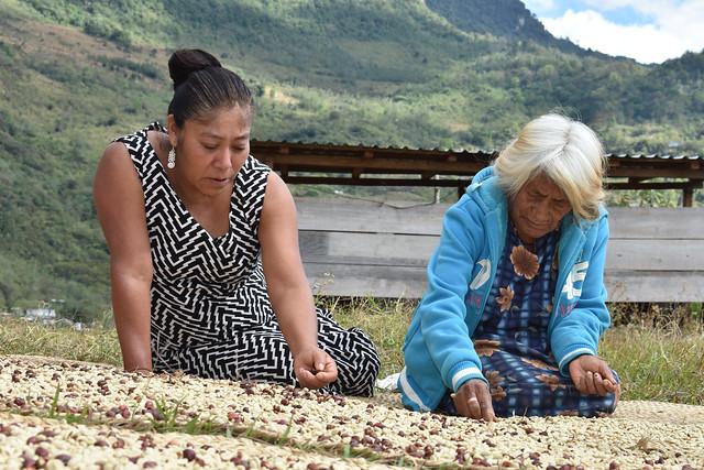 Concurso de fotografía: Mujeres indígenas y Seguridad Alimentaria en América Latina y el Caribe