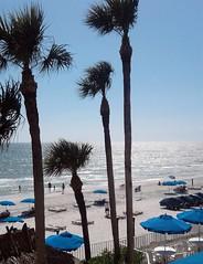 North Redington Beach, FL