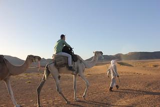 Ben Haddou & Sahara Desert, Morocco