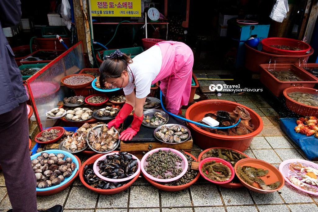 Busan Itinerary Jagalchi Market
