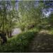 Forest path, Dutch River Landscape, Floodplains