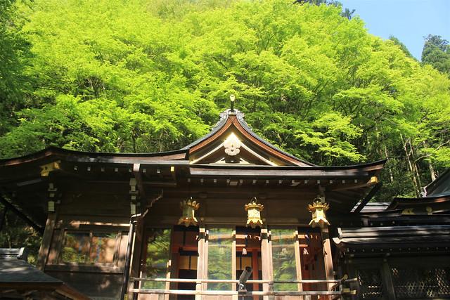 kifune-syaden001