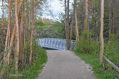 Bridge at Lake Erie Bluffs