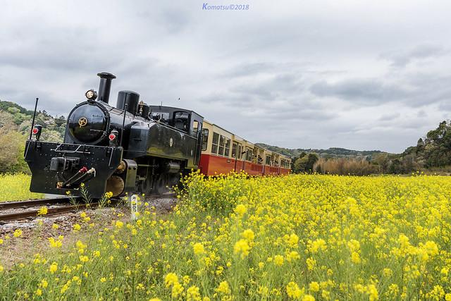 小湊鐵道.里山トロッコ