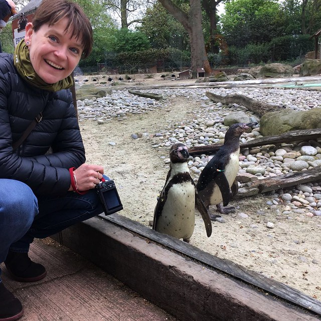 Me and the penguins