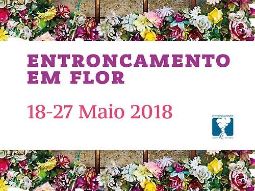Festa da Flor MUPI Programa 2017 . 115x1751