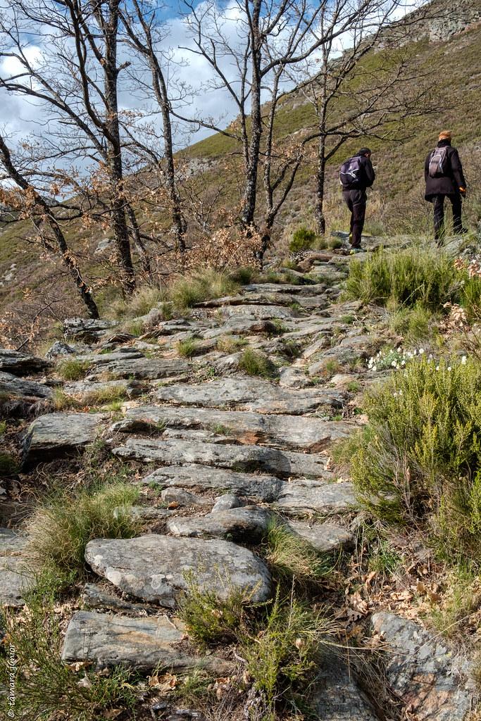 33.- 2018.- Sanábria - Caminhada Vados de San Ciprián (171)