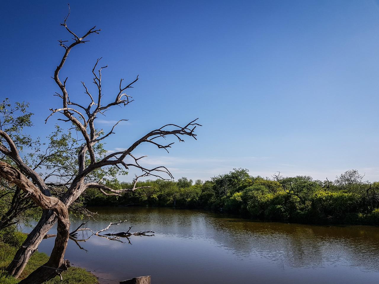 Las lagunas saladas del Chaco Paraguayo, específicamente el campamento Laguna Capitán, tomada con el smartphone Samsung Galaxy Note 8, en el mes de Enero pasado. (Elton Núñez).