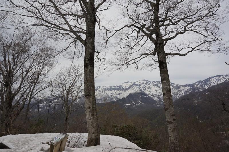 白山パノラマ展望台から市ノ瀬園地へ