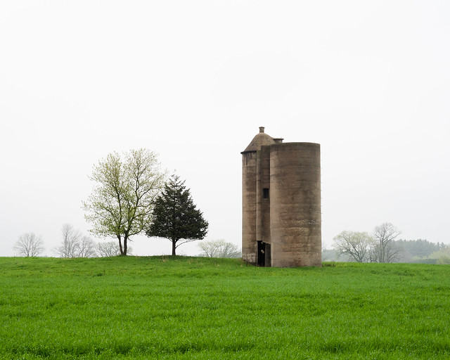 Grass, Trees and Silos