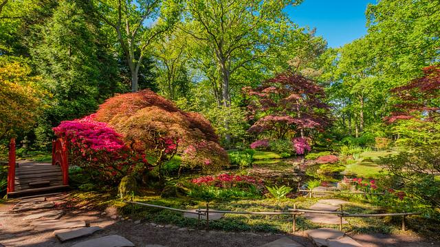 Japenese Garden in Clingendael, The Hague, Netherlands