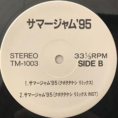 スチャダラパー:サマージャム '95(LABEL SIDE-B)