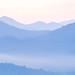 Smoky Mountains Zen