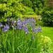 Bell House Garden..