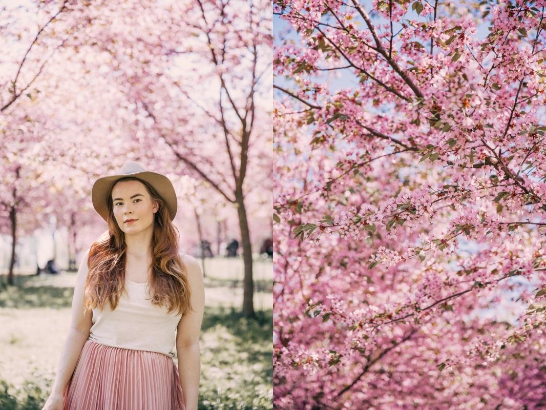 roihuvuori kirsikkapuisto annieveliina-5-side