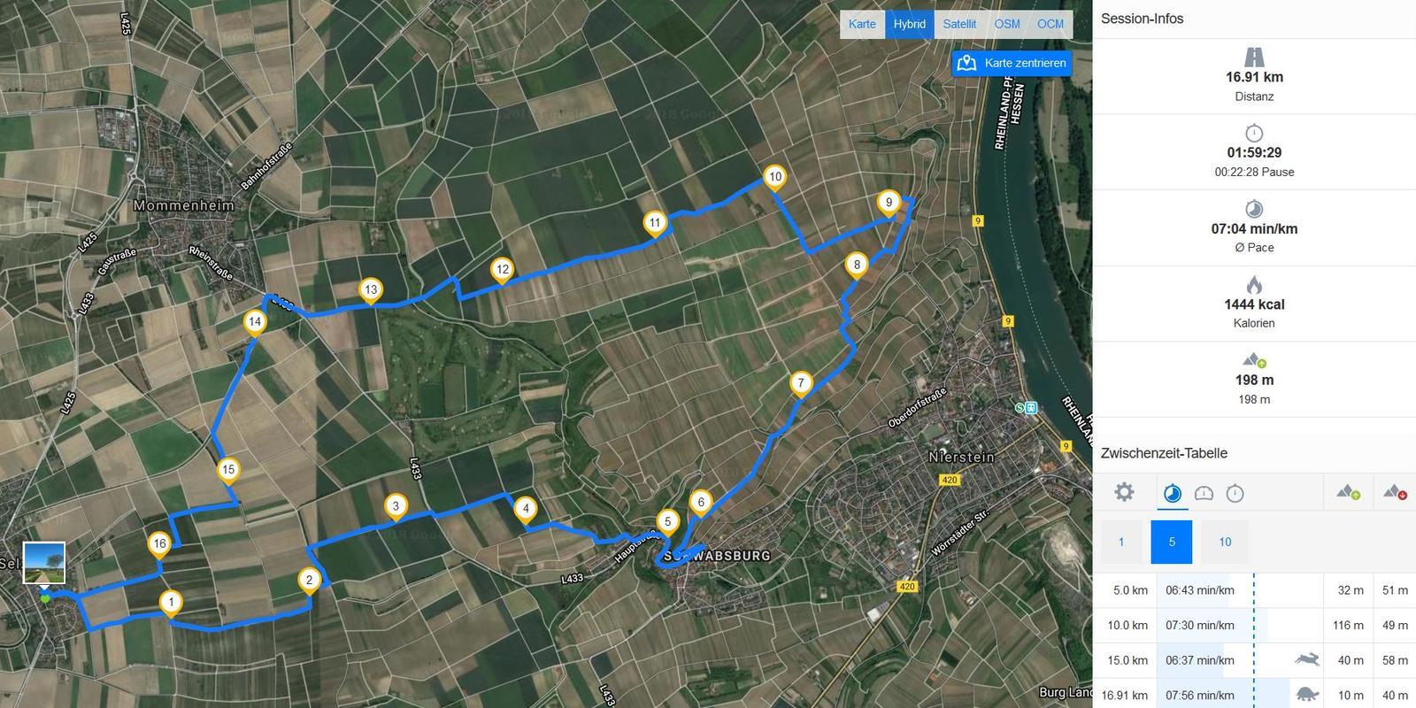 SunriseRun - Einmal Rheinterrassen und zurück (Screenshot Runtastic)