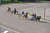 Kasaške dirke v Komendi 13.05.2018 dirka enovpreg Ponijev