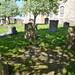 Irvine Old Parish Churchyard (209)
