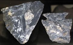Flint artifacts (Upper Mercer Flint, Pennsylvanian; Ohio, USA) 1