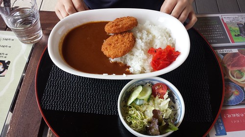 Mince Cutlet Curry