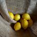 un sacco di limoni by mluisa_
